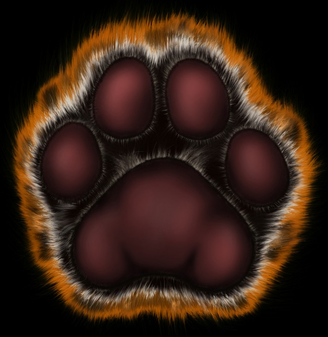 Tatze-tiger-shutterstock_3903459