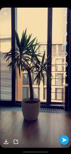 Snapchat Tutorial Filter 8