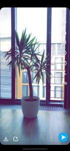 Snapchat Tutorial Filter 9